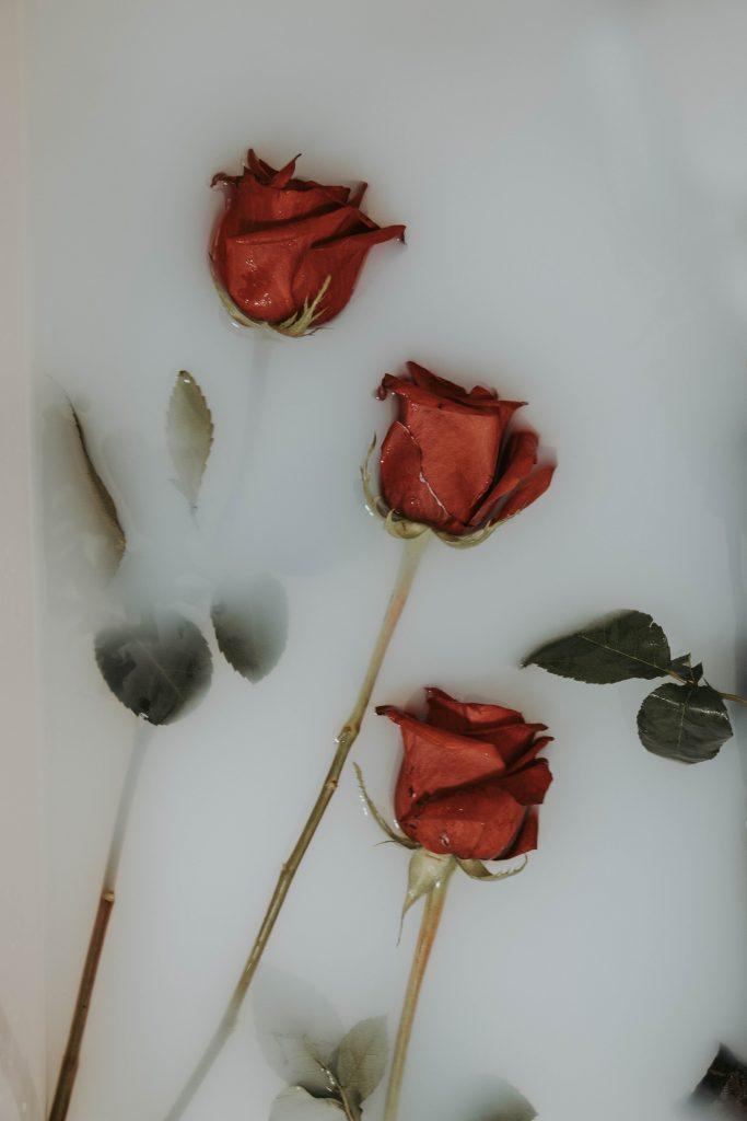 rose-lingammassage
